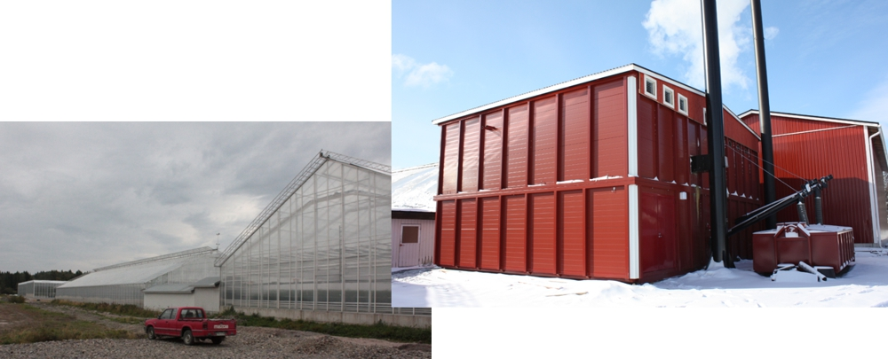 Huge greenhouse heated with a containerized biomass heating plant