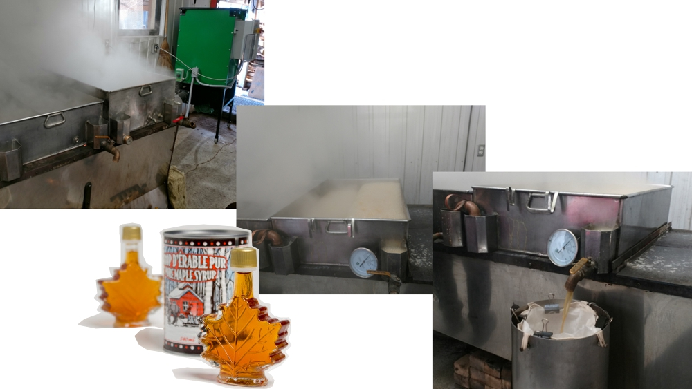 Efficient maple sap evaporation with the retrofit biomass burner installed on the evaporator